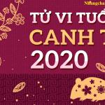 Tử vi tuổi tý nam mạng và nữ mạng năm 2020 - Nét chung người tuổi Tý ( Phần I )